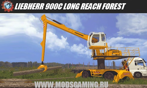 LIEBHERR 900C LONG REACH FOREST