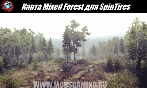 SpinTires download map mod Mixed Forest
